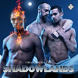 Shadowlands                   By:                                                                                                                                 Charlie David                               Narrated by:                                                                                                                                 Charlie David                      Length: 3 hrs and 36 mins     5 ratings     Overall 3.6