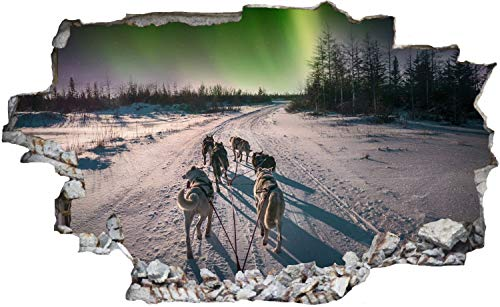DesFoli Husky Hundeschlitten Nordlichter Wandtattoo Wandsticker Wandaufkleber C2459 Größe 40 cm x 60 cm