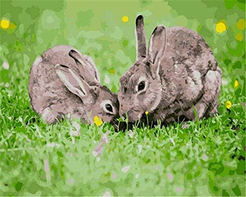 Kits de pintura por números para adultos - Kits de regalo de pintura al óleo de bricolaje para adultos principiantes Decorar regalos - Animal conejo gris 40X50Cm