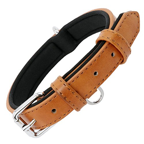 Grand Line Collar de Perro de Cuero Duradero Acolchado Suave con Perforador de Agujeros, Marrón(S)
