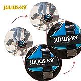 JULIUS Powergeschirr, Größe: 2, schwarz - 2