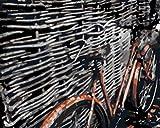 HLDJ DIY Erwachsene Kinder Anfänger Digitale Ölgemälde -40x50cm Leinwand Malerei mit Pinsel und Acrylfarbe-Altes Fahrrad_DIY-Framework