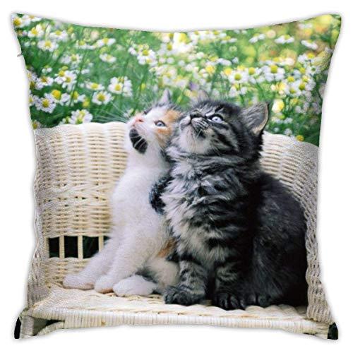 baoan Funda de cojín con diseño de gatitos y texto en inglés 'Home Throw', funda de cojín decorativa, cuadrada, 45 x 45 cm
