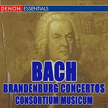 Bach: The Complete Brandenburg Concertos