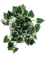 BLENGA 2 m sztuczny bluszcz girlan plastikowe wiszące rośliny winorośli gad jaszczurki terrarium wspinaczka dekoracja sztuczne rośliny liście do wewnątrz na zewnątrz białe liście rodzynek