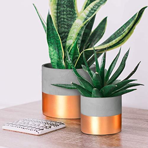 2 Pack, 6 inch and 4 inch Indoor Copper/Orange Cement Concrete Planter Pots with Drainage Hole, Medium Succulent Planter/Succulent Pot Set