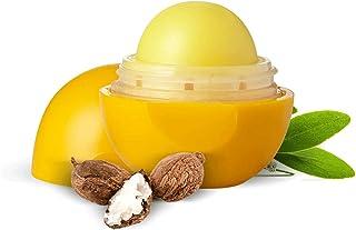Organic Harvest Shea Butter Flavour Non Colored Lip Balm Enriched With Jojoba Oil & Lanolin, For Dark Lips to Lighten, Lip...