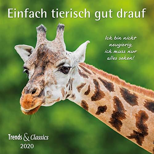 Einfach tierisch gut drauf 2020 - Broschürenkalender - Wandkalender - mit herausnehmbarem Poster - Format 30 x 30 cm