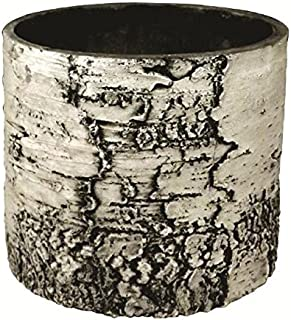 SURREAL Planters BV-10 Vertical Planter, 12-Inch, Birch
