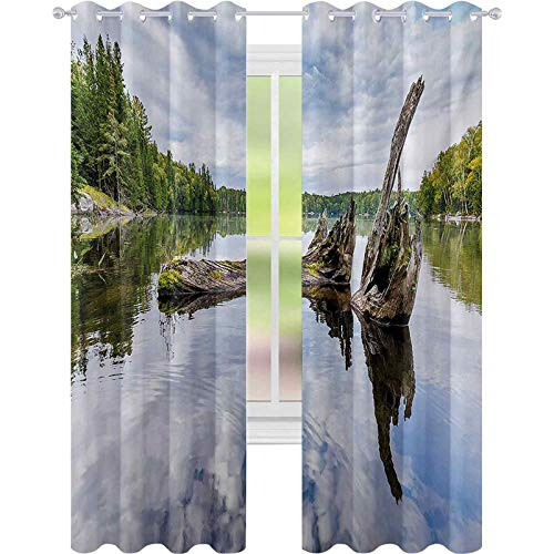 Room darkening window curtains, Remains of a White Cedar Tree Trunk in the Lake and the Sky Digital Image, W52 x L108 Room Darkening Curtain for Living Room, Green Pale Grey