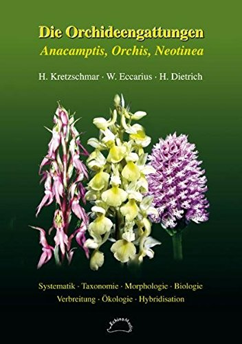 Die Orchideengattungen Anacamptis, Orchis, Neotinea: Phylogenie, Taxonomie, Morphologie, Biologie, Verbreitung, Ökologie, Hybridisation
