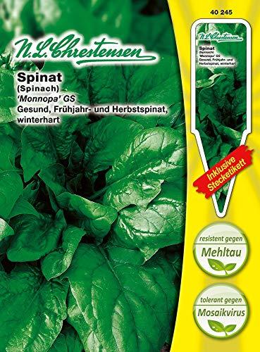 N.L. Chrestensen 40245 Spinat Monnopa (Spinatsamen)
