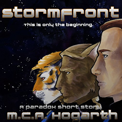 Stormfront audiobook cover art