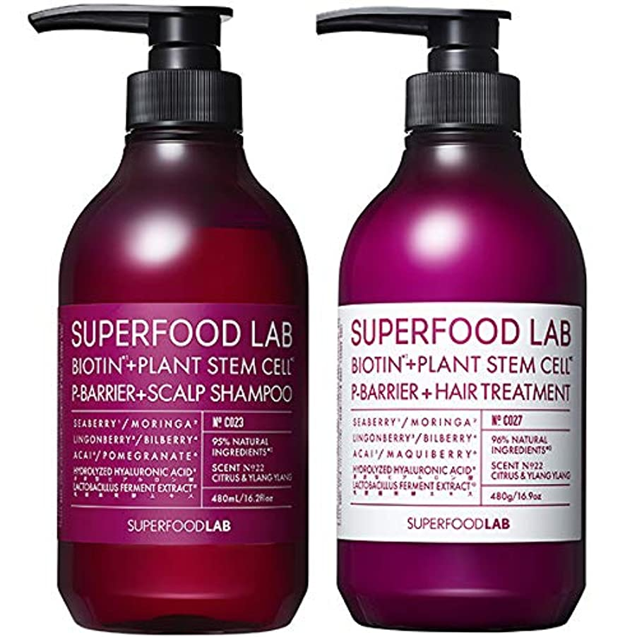 マーカー破壊的争いSUPERFOOD LAB BIOTIN + P-BARRIER SHAMPOO & TREATMENT