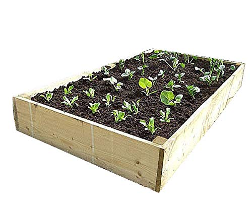 Raised beds from our Premier, thicker timber range. These beds are 7 inches...
