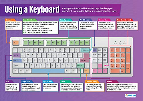 """Using a Keyboard  Technology and Computing Posters  Gloss Paper Measuring 33"""" x 235""""  ICT Charts for The Classroom  Education Charts by Daydream Education"""