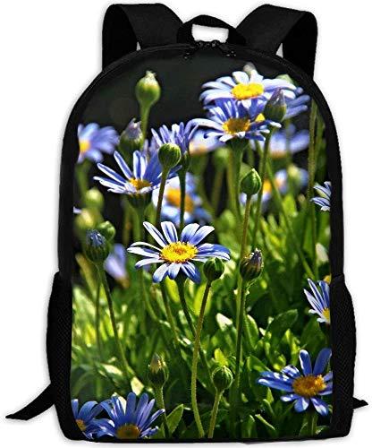Natur Gras Blüte Lila Pflanze Feld...