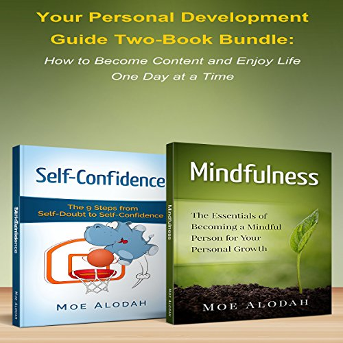 Your Personal Development Guide audiobook cover art