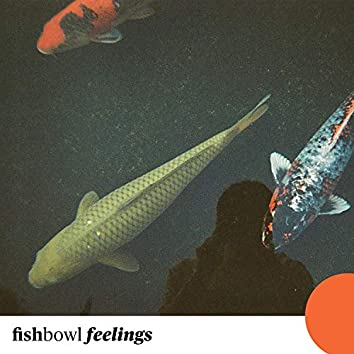 Fishbowl Feelings