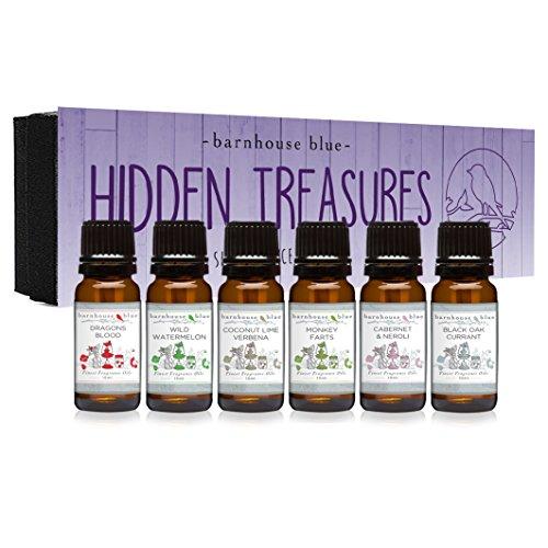 Hidden Treasures Gift Set of 6 Premium Fragrance Oils - Coconut Lime Verbena, Cabernet & Neroli, Dragons Blood, Wild Watermelon, Monkey Farts, Black Oak Currant - Barnhouse Blue
