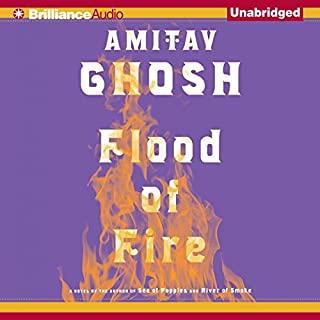 Flood of Fire cover art