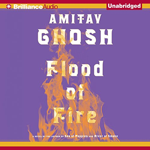 Flood of Fire audiobook cover art