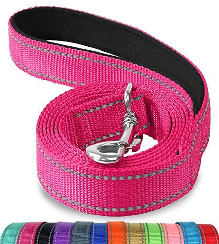 Joytale Hundeleine mit Bequemen Gepolsterten Griff, Reflektierend Hunde Leine für Ausbildung und Wandern, Nylon Hundeleine Für Mittlere und Große Hunde,Pink