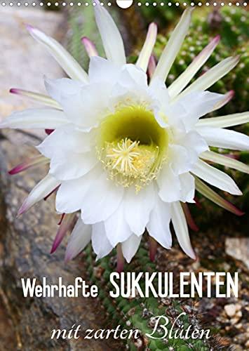 Wehrhafte Sukkulenten mit zarten Blüten (Wandkalender 2022 DIN A3 hoch)