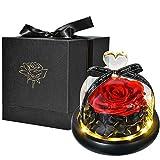 Flor Preservada Rosa Eterna con Luces LED y Caja de Regalo