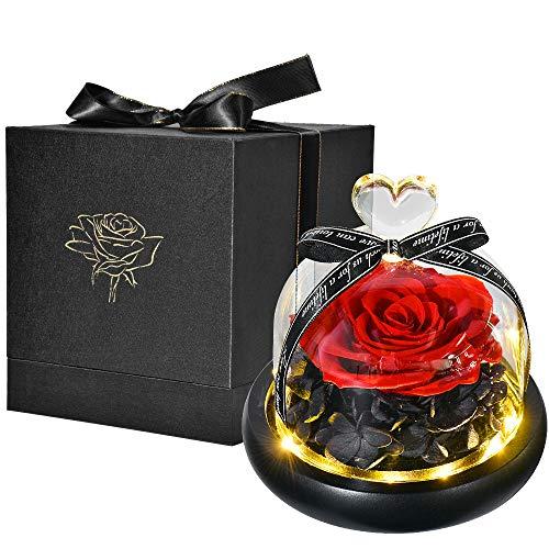 Ewige Rose im Glas, HelaAccueil die schöne und das biest Rose With LED Light and Gift Box Valentinstag Geschenk Muttertagsgeschenk Weihnachtsgeschenk (Rot)