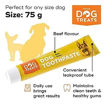 Natural Dog Treats Brosse à Dent et 4X Dentifrice Kit pour Chien, Soins Dentaires pour Chiens, Additif Anti-tartre pour Soulager la Mauvaise Haleine