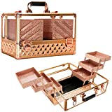 Ver Beauty Professional Jewelry & Makeup Organizer, 3.8mm Heavy Duty Acrylic Travel Case with 6 Extendable Trays and Keylocks, Rose Gold Diamond