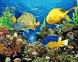 Pintura por números Pintura digital Peces de acuario Animales abstractos Pintura al óleo pintada a mano para arte de pared Imagen Decoración del hogar 40 × 50 cm (sin marco)