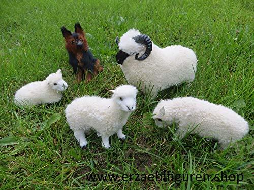 Schafherde aus Echtfell zu 30 cm Erzählfiguren, Egli-Figur und Krippenfiguren - Widder, 2 Schafe, 1 Lamm, Schäferhund