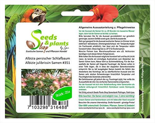 Stk - 25x Albizia persischer Schlafbaum Albizie julibrissin Samen #351 - Seeds Plants Shop Samenbank Pfullingen Patrik Ipsa