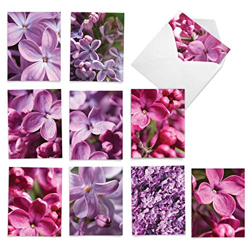 The Best Card Company - 10 Flower All Occasion Blank Cards (4 x 5.12 Inch) - Boxed Cards with Envelopes - The Color Purple M6032