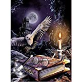MXJSUA DIY 5D Diamond Painting Kits de perforación Redondos completos Rhinestone Picture Art Craft para decoración de la Pared del hogar 30x40 cm Black Castle Eagle Ancient Book