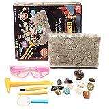 househome - Kit de registro de piedras preciosas, kit científico de varilla de piedras preciosas para niños, enseñanza de ciencias geológicas, juguete de excavación minera
