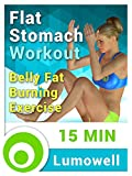 Flat Stomach Workout - Belly Fat Burning Exercise
