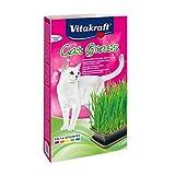 Vitakraft cat gras hierba para gatos
