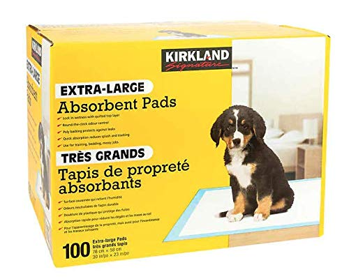 KIRKLAND Extra-Large Absorbent Pads, 100 Large Pads, 30