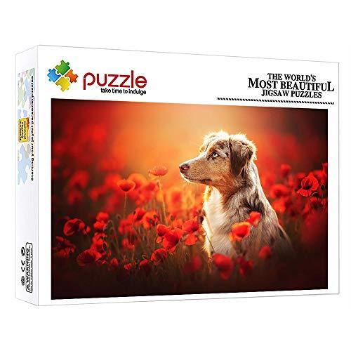 FFGHH Puzzles 1000 Piezas Puzzles Perro Puzzle 1000 Piezas Infantil Mini Puzzle Rompecabezas Imposible para Adultos Niños Amigo 38Cm X 26Cm