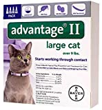 Bayer Advantage II Flea and Tick Treatment for Large Cats, 4 Monthly Treatments