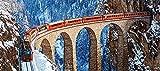 FAWFAW Puzles Adulto De 1000 Piezas, Los Alpes Suizos, Tren