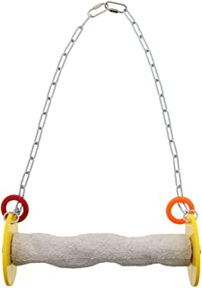 large parrot swings