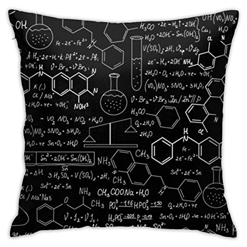 Traveler Shop Pillowcase Science Chemistry Laptop Pad Standard Pillowcase Cushion Cover Machine Washable,18x18in