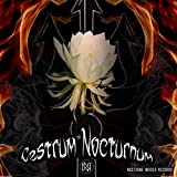 Cestrum Nocturnum