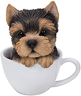 Best puppy in a cup Reviews