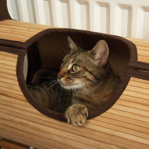 Choosing a cat radiator bed