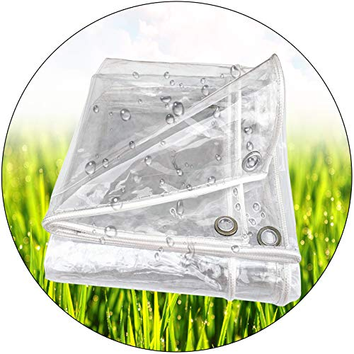 Toldo Impermeable, PVC Cortina Impermeable Metal Ojal Suave Fácil Apilar, Planta Encendiendo Mantener Caliente Varios Tamaños LIANGLIANG (Color : Claro, Size : 3x10m)